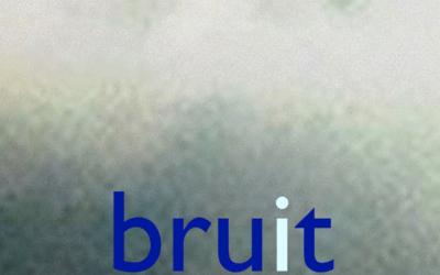 bruit brut 00