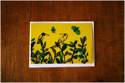Canopée – cartes postales