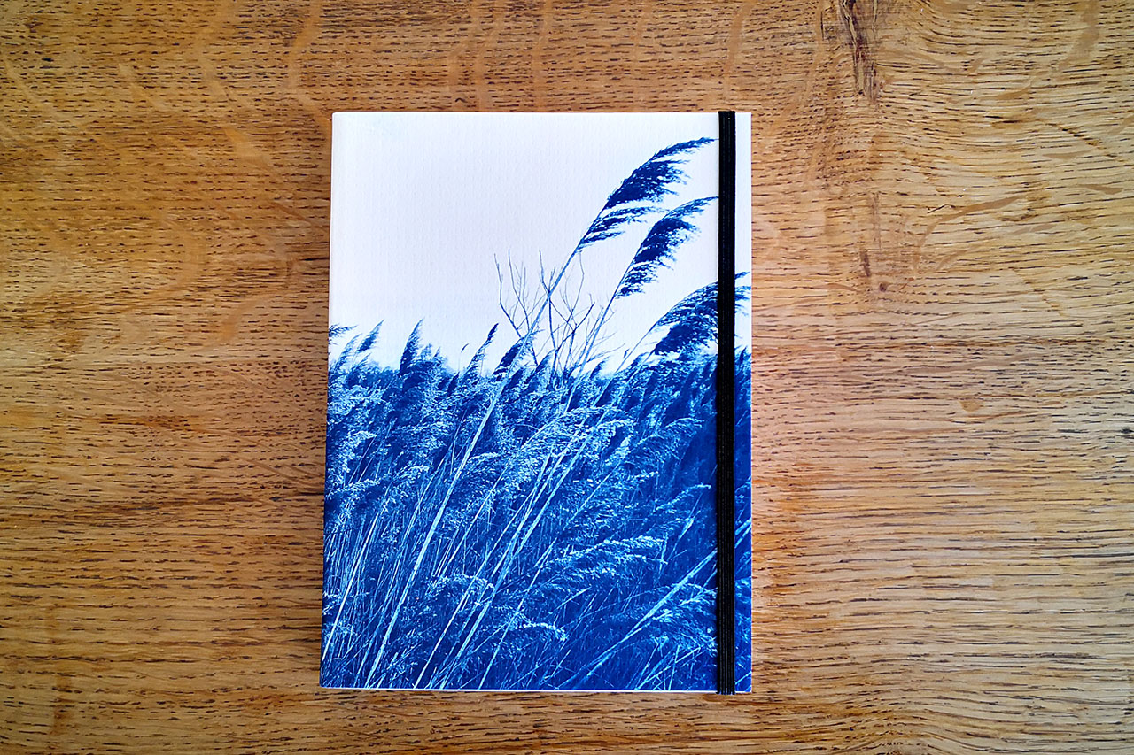 images cyanotypes
